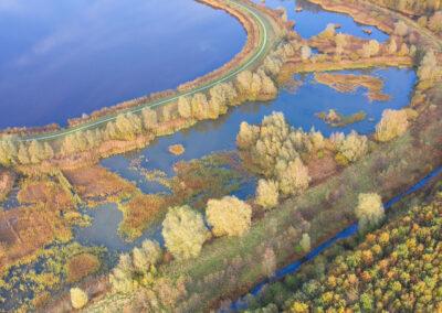 Bos op Houwingaham   Bad Nieuweschans   Westerwolde